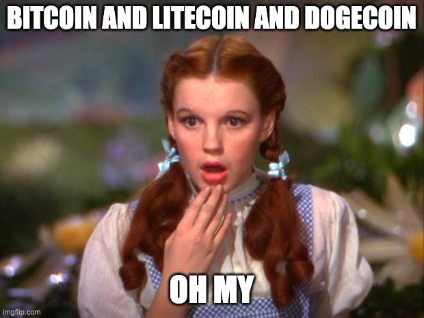 dorothy overwhelmed by crypto jargon