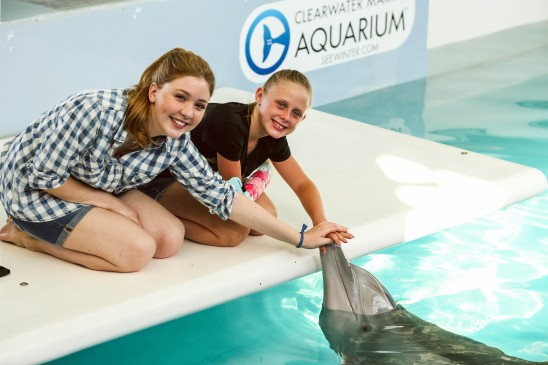 Bionic kid Anni touching Winter, the amazing dolphin with a prosthetic tail