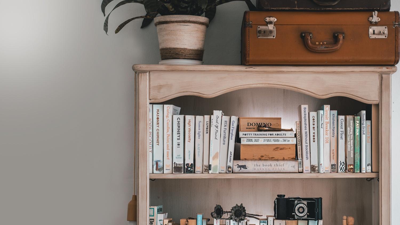 bookshelves-plant-luggage