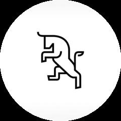 Electrameccanica Vehicles Corp. logo