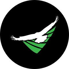 AgEagle Aerial Systems, Inc. logo