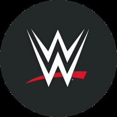 World Wrestling Entertainment, Inc. logo