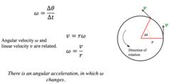 AP Physics 1 - Rotational Motion and Angular Momentum
