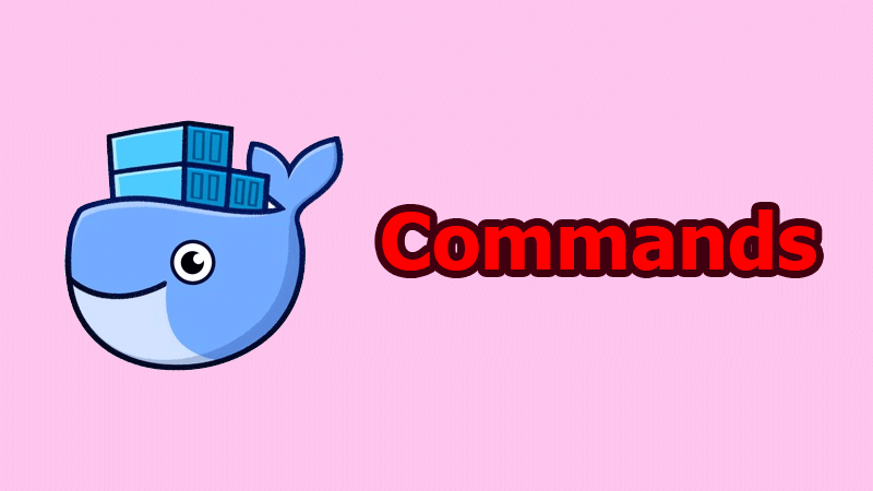 The most popular Docker commands