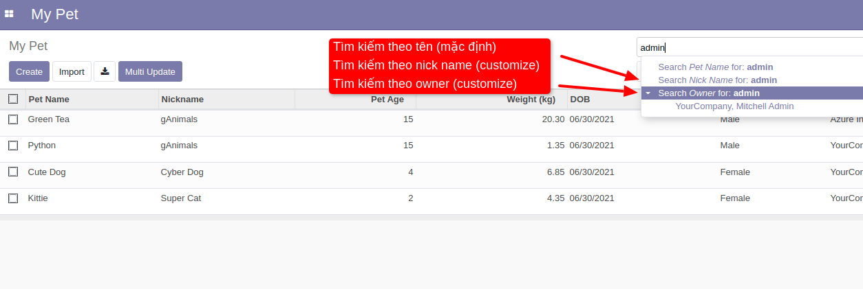 odoo search view on fields