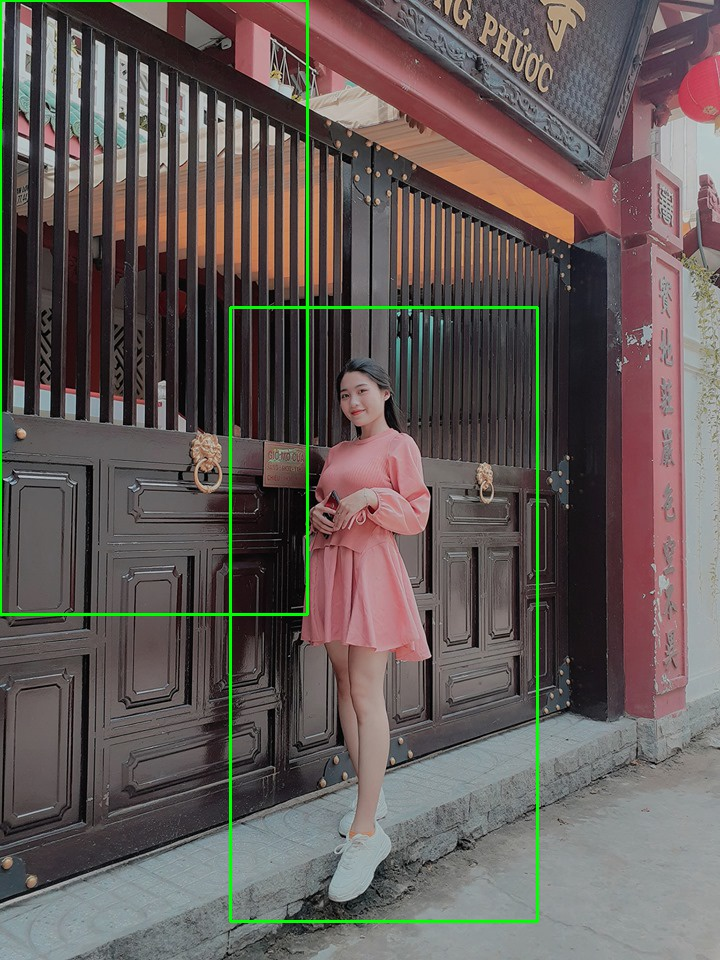 Việt Hân - person detection