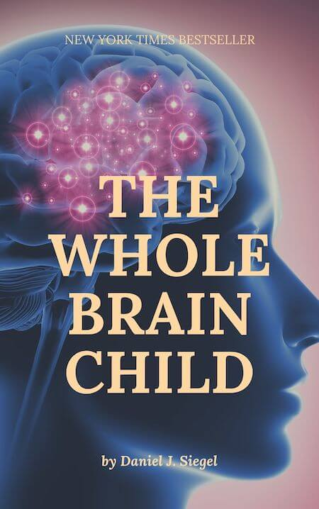 book summary - The Whole Brain Child by Dr. Dan Siegel