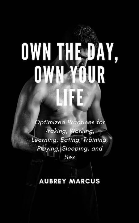 book summary - Own the Day, Own Your Life by Aubrey Marcus