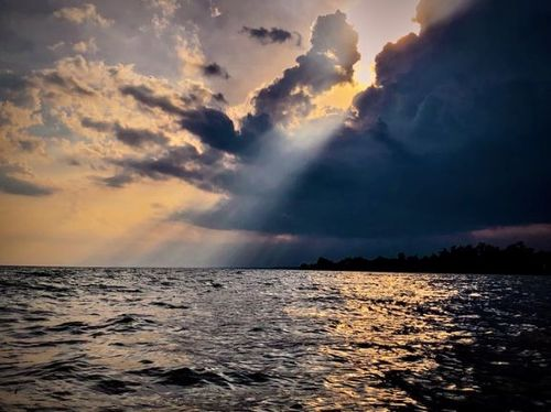المسيح يُعلن عن سلطانه