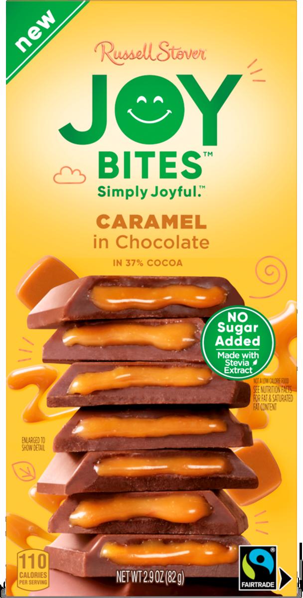 Joy Bites Caramel in Chocolate Bar