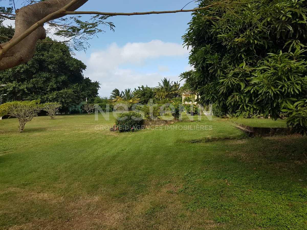 house Mauritius 20