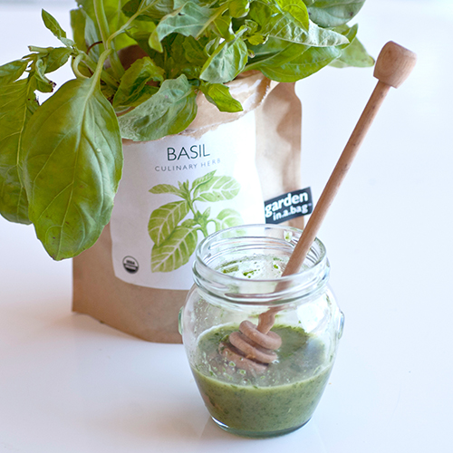 basil for kidney stone treatment at home