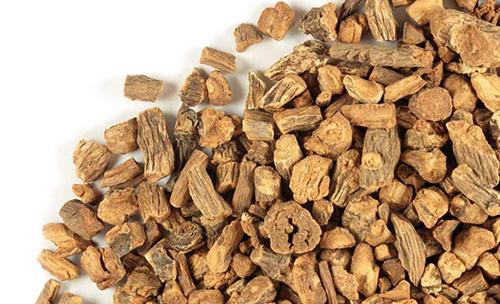 dandelion root for kidney stone treatment