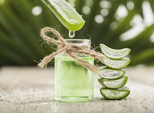 aloe vera to fight infection