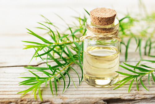 tea tree oil for magical skin care of the pilonidal cyst