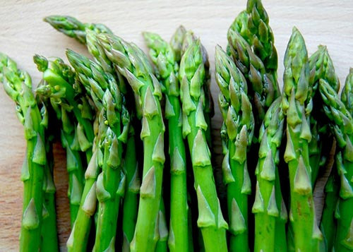 Use Asparagus racemosus for Erectile Dysfunction
