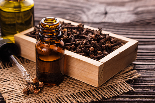 clove oil to treat uti without antibiotics