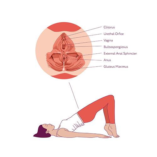 woman doing pelvic exercises