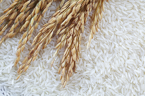pictorial representation of polished rice