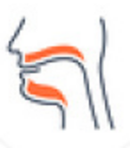ENT-Care_icons