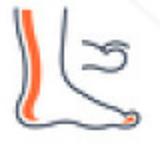 Varicose Veins_icons