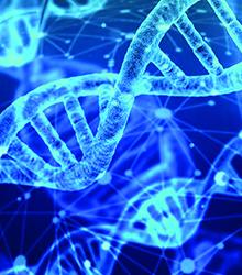 Genetics or family factors