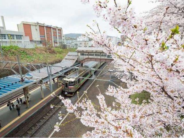 小樽駅から徒歩7分、クラフトビアバー併設のゲストハウス
