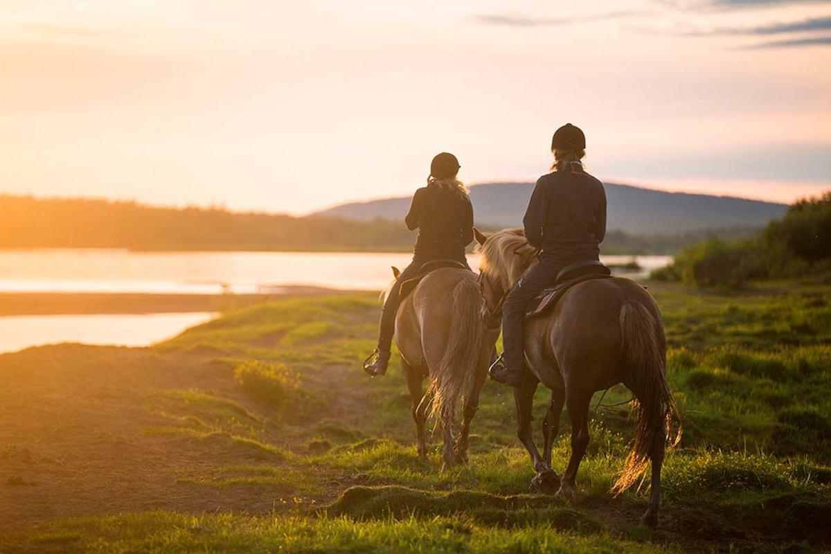 Конная прогулка на лошадях