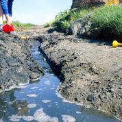Tips til lek i vannkanten - Lag demning og båtbane