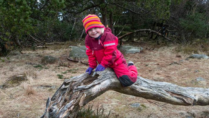 Jente klatrer på rot i naturen