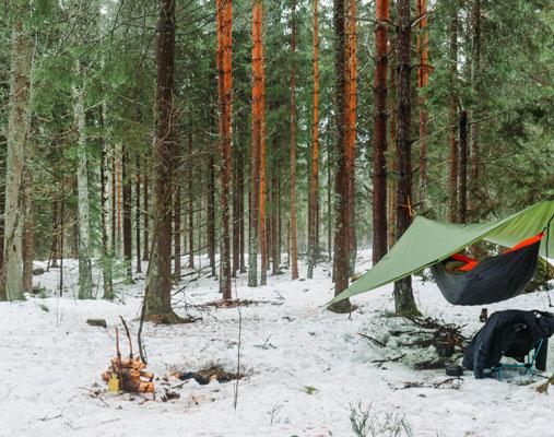 Campplass