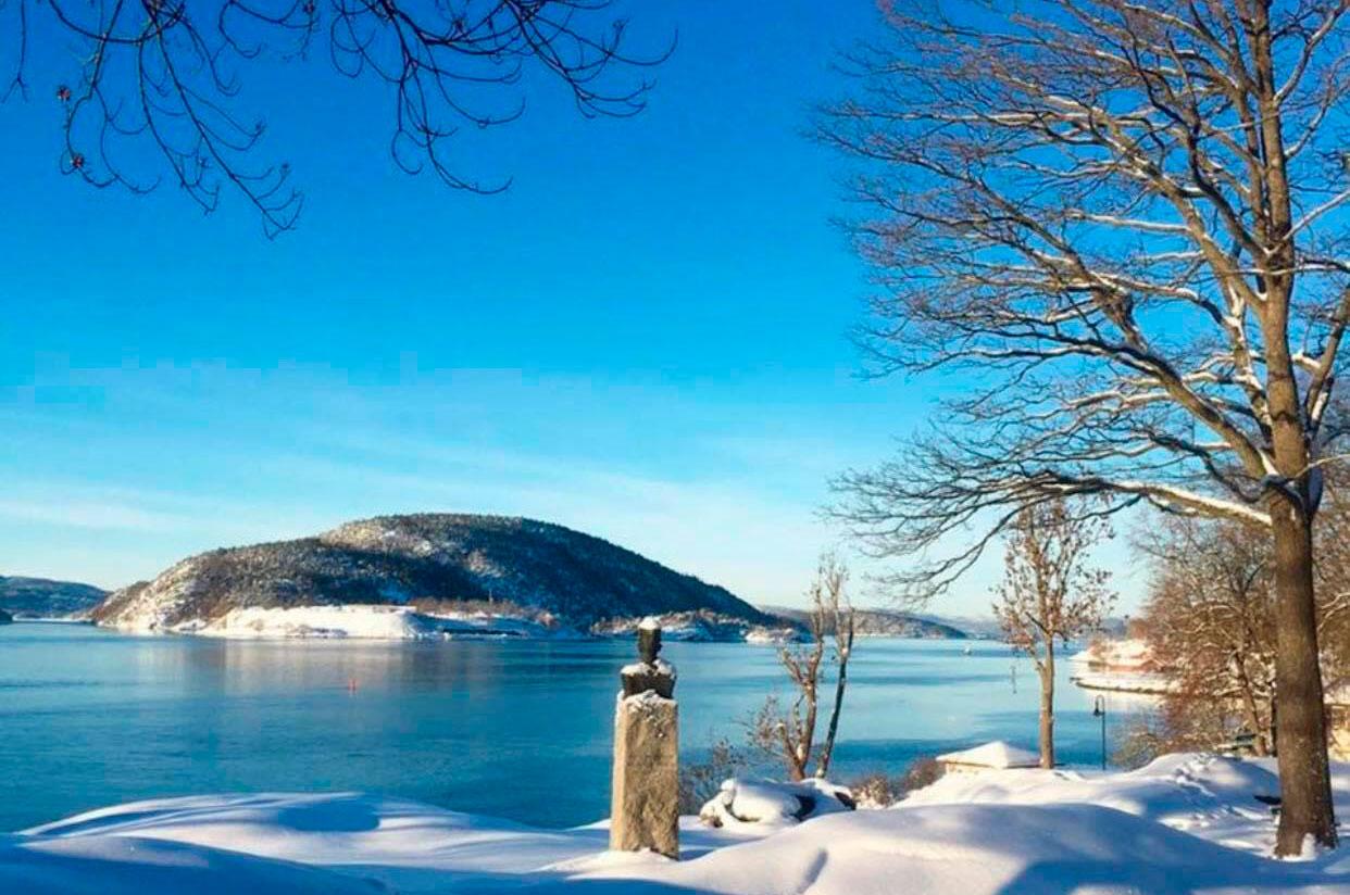 Vinterkledd Drøbak med utstikt til Oscarsborg
