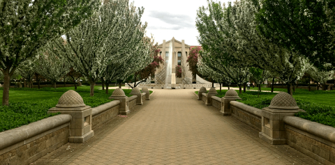 The Purdue Engineering Fountain surrounded by flowering trees
