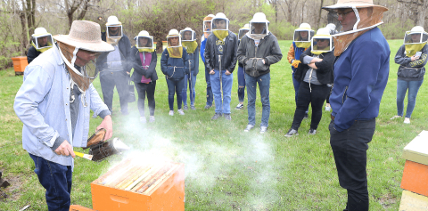 Students wearing bee veils learning about bee hives