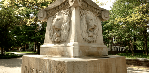 The Stone Lions Fountain