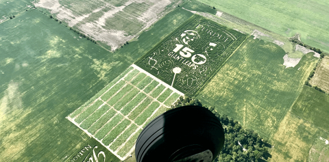 An aerial view of the Purdue corn maze at Exploration Acres