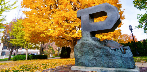 The Unfinished Block P sculpture surrounded by yellow fall leaves