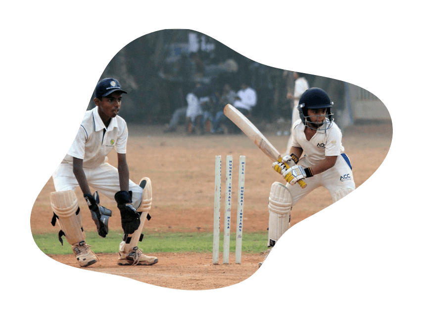 Cricket Sport Image