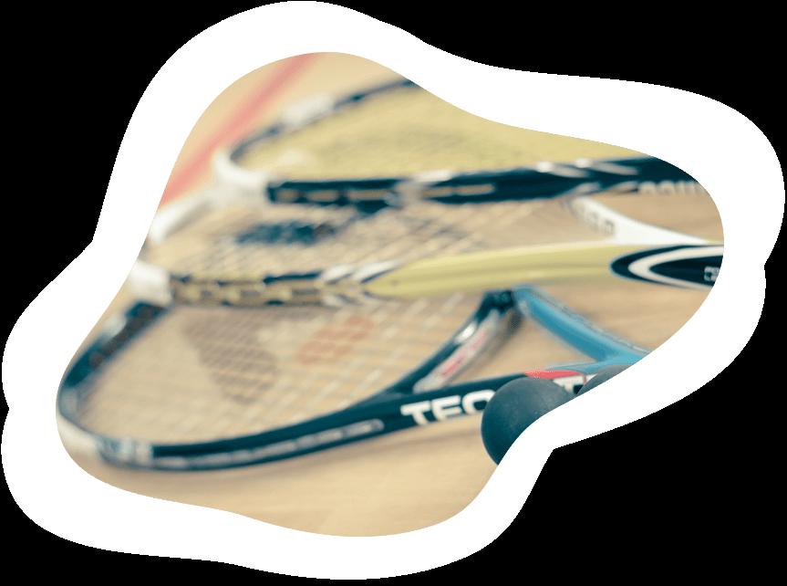 Speed Badminton Sport Image