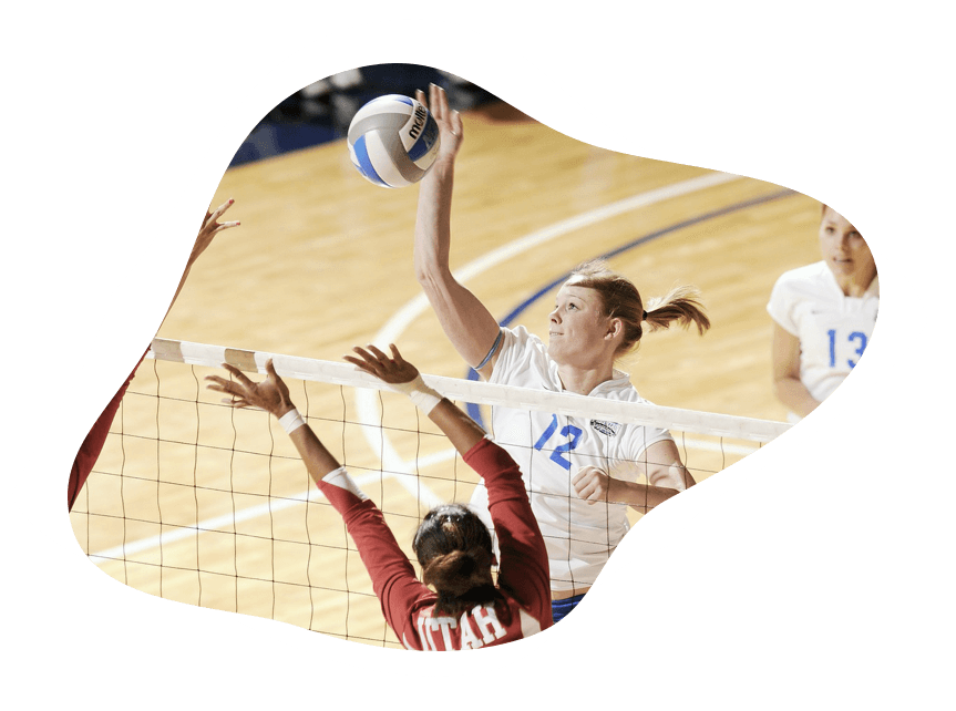 Volleyball Sport Image