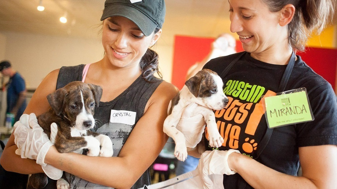 Pet supplies needed for Austin Pets Alive