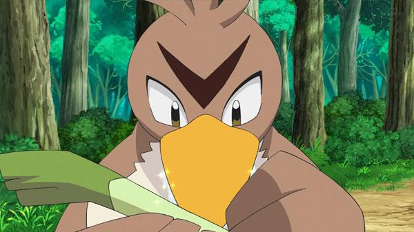 Capitulo 23 Anime Pokemon / Viajes