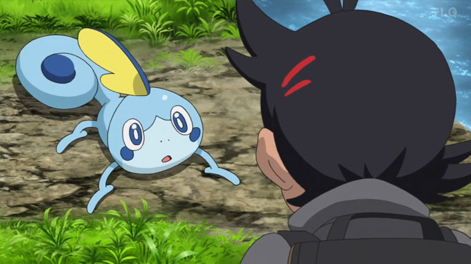 Pokémon Viajes Capítulo 28 - Sobble