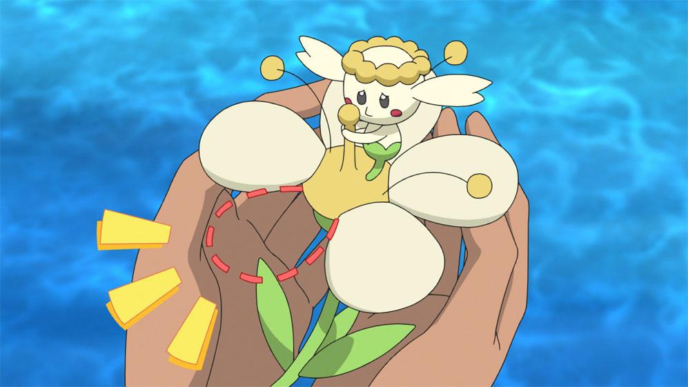 Capítulo 66 Pokémon Viajes - El Flabébé flor blanca