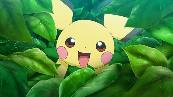 Pichu Anime Pokemon 2019