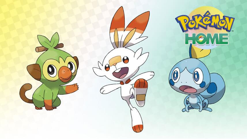 Consigue a Grookey, Scorbunny y Sobble con Habilidad Oculta en Pokémon HOME