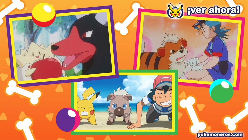 TV Pokémon Especial: Días perrunos