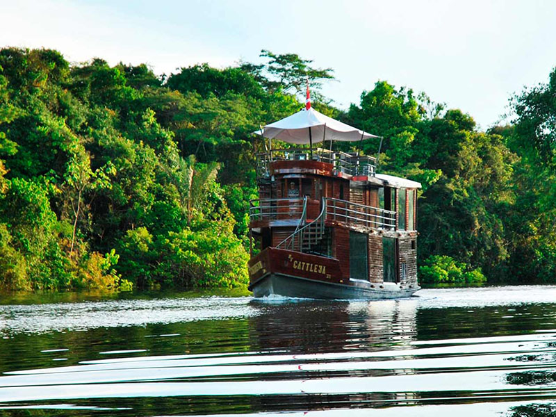 Amazon Cruise Voyagers | Ecuador