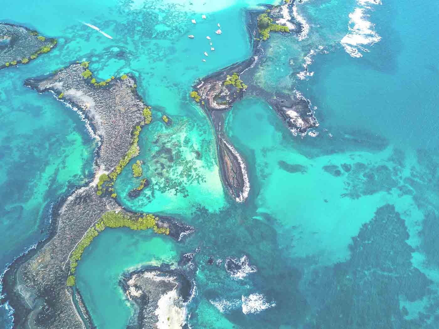 Baltra island | Galapagos