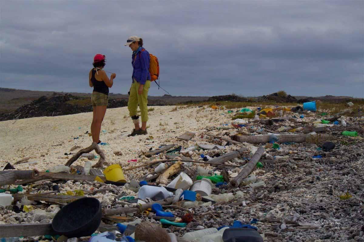 Plastic pollution   Galapagos islands